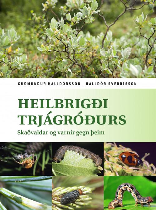 Heilbrigði trjágróðurs