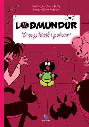 Loðmundur - Draugahúsið í þokunni