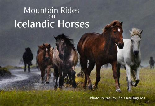 Mountain Rides on Icelandic Horses