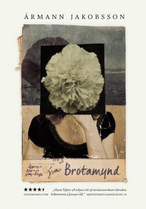 Brotamynd