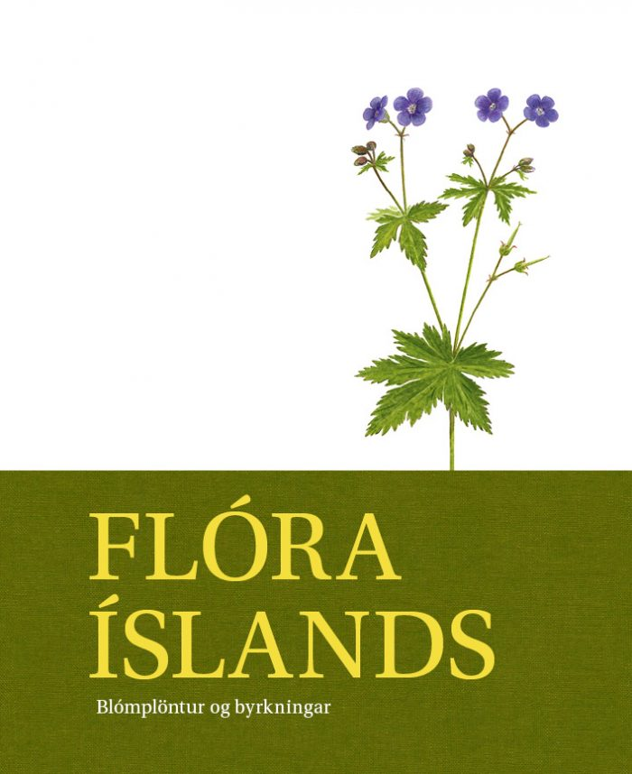 Flóra Íslands – blómplöntur og byrkningar