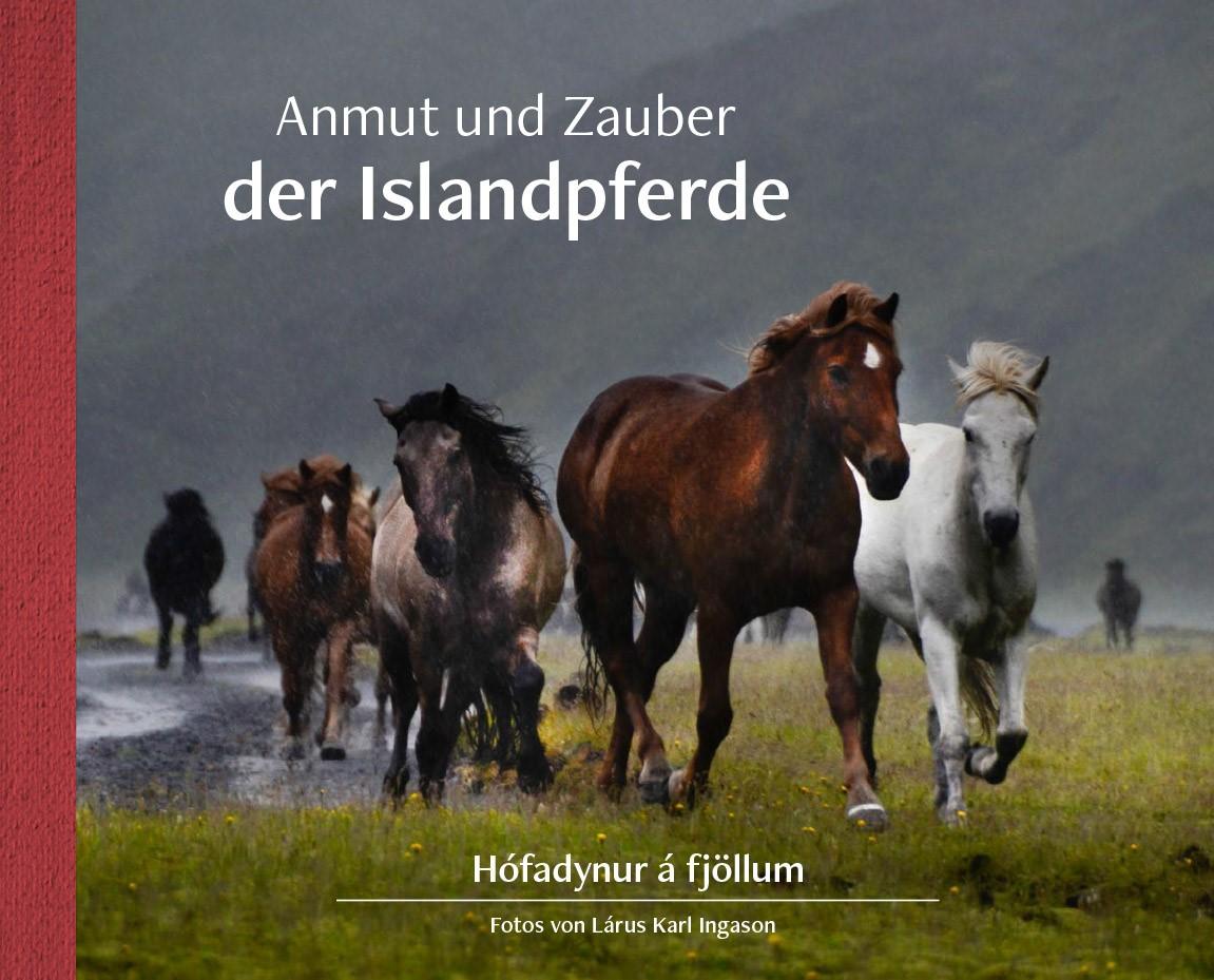 Anmut und Zauber der Islandpferde / Hófadynur á Fjöllum