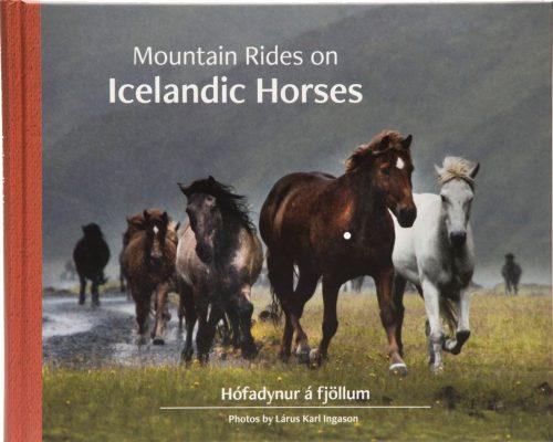 Mountain rides on Icelandic horses / Hófadynur á fjöllum
